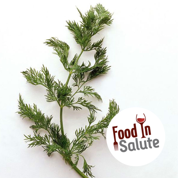 FOOD IN SALUTE – FINOCCHIETTO SELVATICO